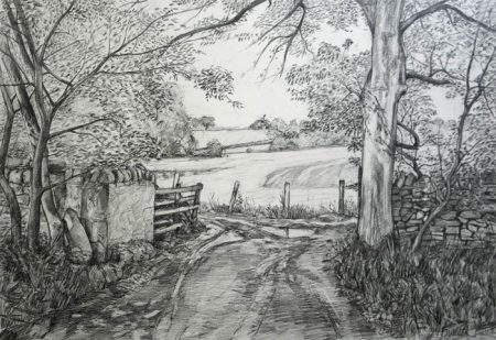 Farmers Track Bolton Abbey