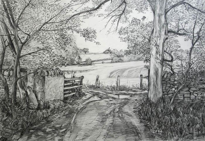 farmers-track-bolton-abbey